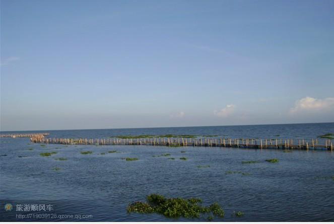 北海金海湾红树林-涠洲岛旅游网 北海涠洲岛旅游攻略